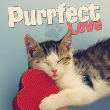 puffect