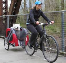 Dog-Bike-Trailers