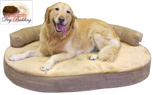 Orthopedic-dog-beds