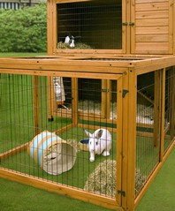 Rabbit-Hutches