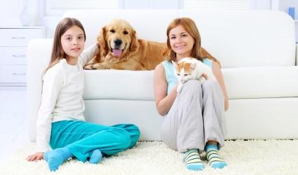 caring-carpets