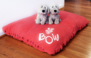 find gifts for dog lovers